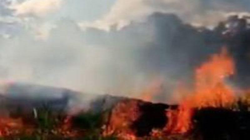 Καίγεται η Γη; Στοιχεία για τις φετινές (2019) και περσινές πυρκαγιές στον πλανήτη
