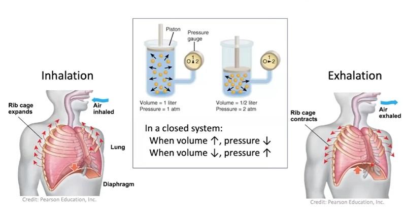 Η σωματιδιακή φυσική σώζει ζωές